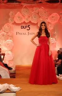 an astounding fashion show depicting super luxury at dlf5 mesmerizes all