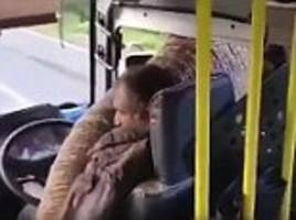 this is a robbery, dumbo! elephant holds up a bus and sticks its trunk