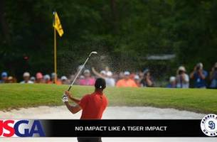 tiger woods makes golf 'must see tv'