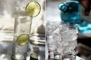wetherspoons is having a huge gin festival - and it is set to last nearly two weeks!