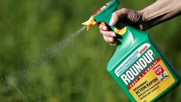 Environment minister Therese Coffey defends Roundup weedkiller tweet