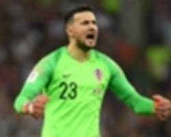 'fulfilled and happy' croatia hero subasic retires from international football