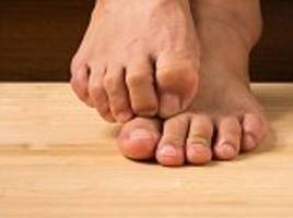 the big toe was the last part of the human foot to evolve