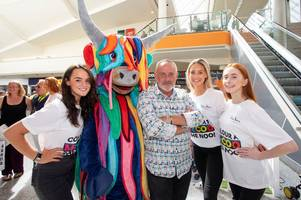 udderly brilliant – steven brown pop-up is a smash-hit success with edinburgh youngsters