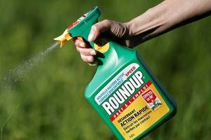 north east lincolnshire council to continue to use 'cancer causing' roundup weed killer - for now