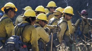 New Forest Service Plan Aims To Alleviate Wildfire Problem