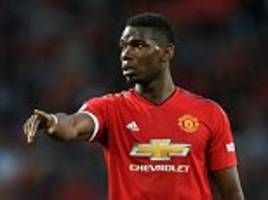 chris hughton doesn't have a plan for brighton to shackle paul pogba