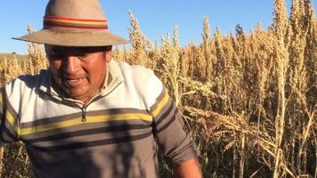 how quinoa is changing farmers' lives in peru