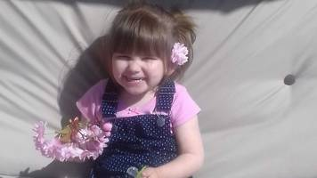 Ava-May Littleboy: Stolen iPad contained photos of trampoline victim