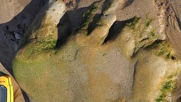 'first' dinosaur footprints recorded on scottish mainland