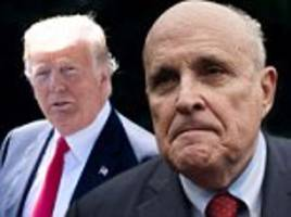 giuliani says trump is 'not a lawyer' and suggests he doesn't understand 'flipping'