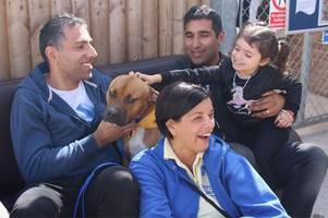 stars of gogglebox help open revamped derby rspca centre
