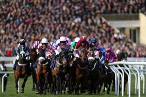 could a 'no-deal' brexit hit the grand national and cheltenham festival hard?