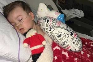 alfie evans' parents welcome baby boy months after son's death