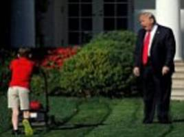 social media reacts to the anonymous 'trump resistance' op-ed piece with funny memes