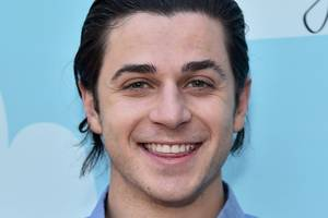 david henrie of 'wizards of waverly place' thanks tsa after he's caught with loaded gun at lax