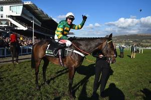 mccoy's awards at cheltenham racecourse: yard's joy as little-known hurdler triumphs over champion buveur d'air