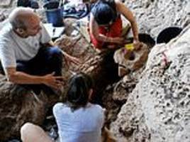 Drink to old times: World's 'oldest brewery' is discovered in northern Israel