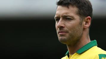 wes hoolahan: west bromwich sign midfielder after norwich exit