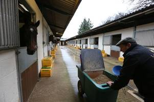racing yard in the cotswolds to almost double in size after plans are given the green light