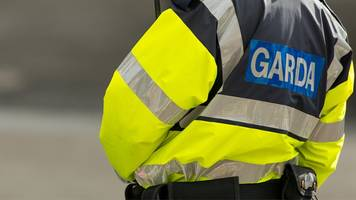 County Louth: Man arrested over fatal stabbing
