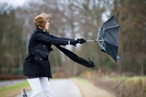 Latest Stoke-on-Trent weather warning has strong winds battering region