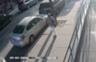 man arrested for attempted williamsburg rape, thanks to good samaritans
