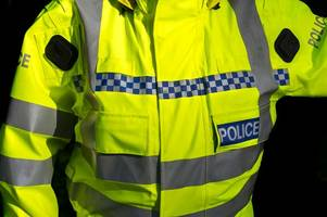 police appeal for witnesses after 'cowardly and nasty attack' on 85-year-old woman in worle