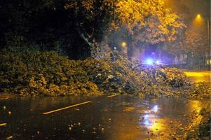 hour by hour weather forecast for birmingham on friday as storm bronagh sparks 'danger to life' met office warning
