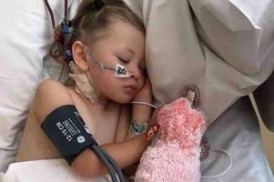 haverhill toddler needs kidney transplant after picking up e. coli on holiday