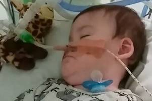 parents of alfie evans hope to set up foundation 'to honour his name'
