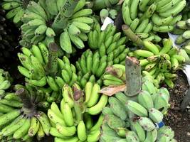 nearly $18 million worth of cocaine found in shipment of bananas donated to texas prison