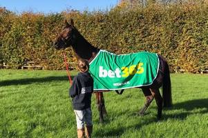 fergal o'brien's star mare colin's sister is retired as owner calls it a day