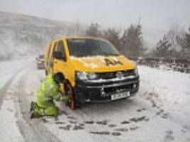 'epidemic' of potholes and extreme weather blamed by aa for a dive in the group's profits