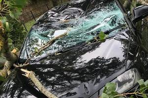 wishaw woman cheats death after massive tree falls on car during storm ali
