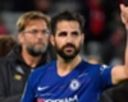 fabregas wants new chelsea contract but won't retire at stamford bridge