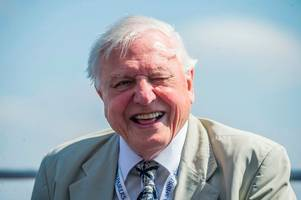 'as driven as ever': your views of television great sir david attenborough at cheltenham literature festival