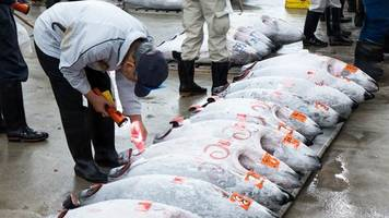 Tokyo market holds last tuna auction before move
