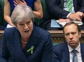 quentin letts: enter mrs may... prompting wild cheers from perhaps three tories