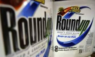 monsanto: judge moves to allow new trial after $289m cancer verdict