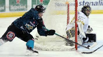 Elite League: Belfast Giants hammer table-topping Nottingham Panthers