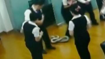 Snake drops into Chinese bank meeting