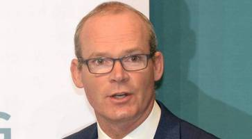 brexit: irish foreign minister coveney rejects 'dangerous' proposal on deferring irish backstop plan