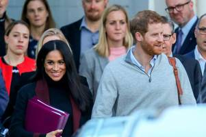 pregnant meghan markle 'banned from jungle on royal tour over zika virus fears'