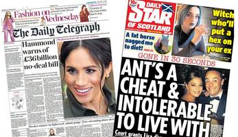 the papers: £36m no-deal bill and ant's 'intolerable' marriage