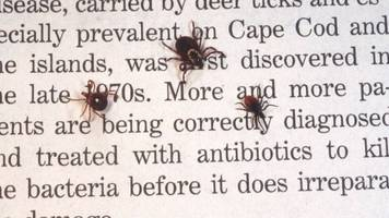 chronic lyme disease is common, but it doesn't officially exist