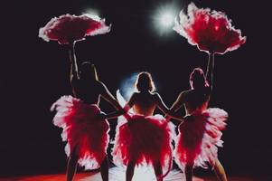 this x-rated over-18s only circus show is coming to the midlands