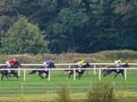 robin goodfellow's racing tips: best bets for saturday, october 20
