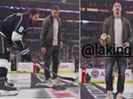 zlatan ibrahimovic drops the ceremonial first puck for la kings and new york islanders clash