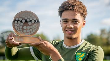 norwich academy resurgence continues as lewis wins young player award